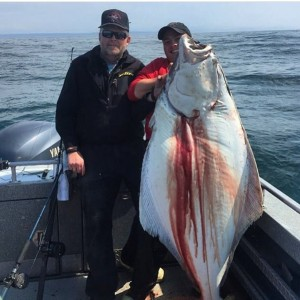Big 120lb halibut fell for the 18oz Glow LingKiller which is also a great Halibut Jig